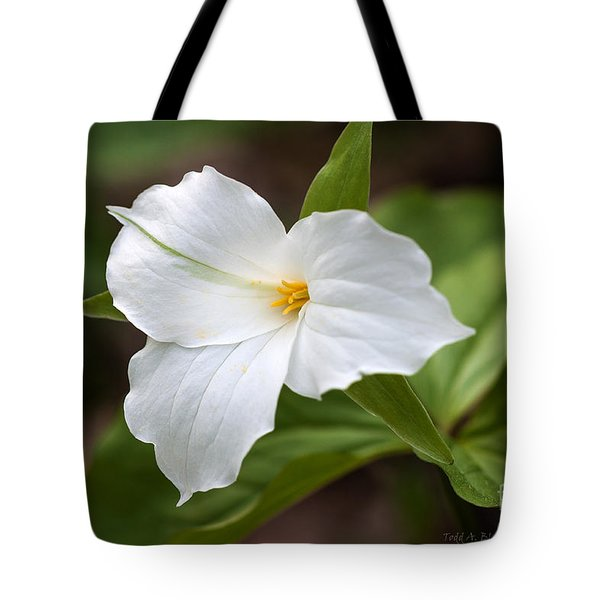 Tote Bag featuring the photograph Trillium by Todd Blanchard