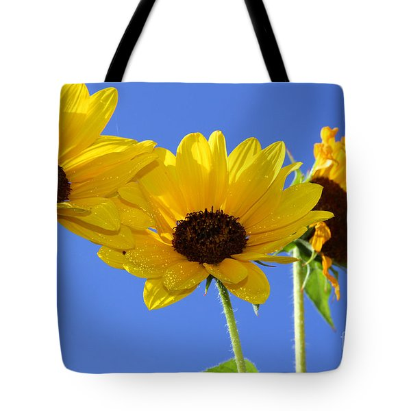 Trio In The Sun - Yellow Daisies By Diana Sainz Tote Bag