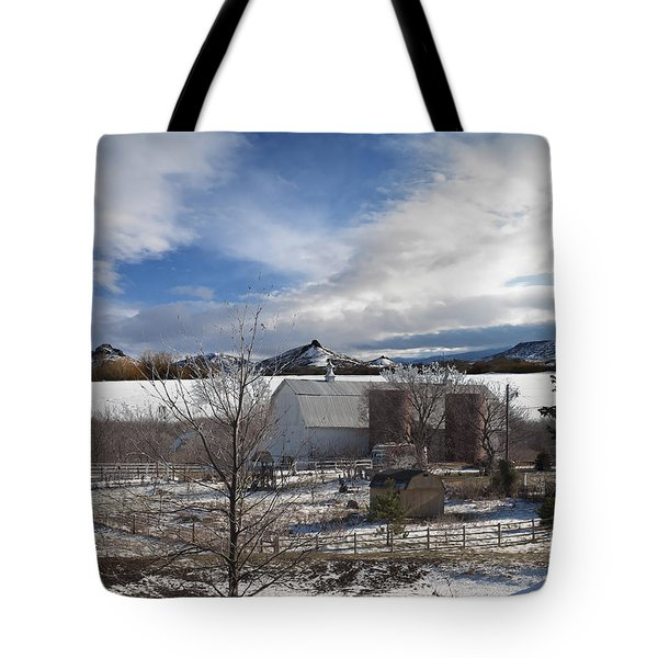 Tote Bag featuring the photograph Trip To Baldwin City Kansas by Liane Wright