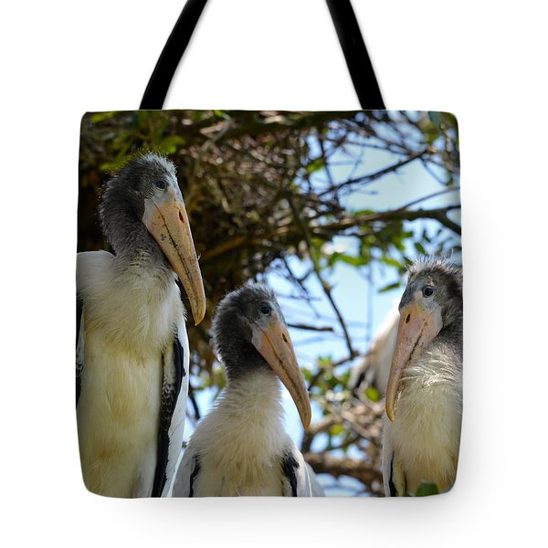 Triplet Wood Stork Nestlings Tote Bag by Richard Bryce and Family