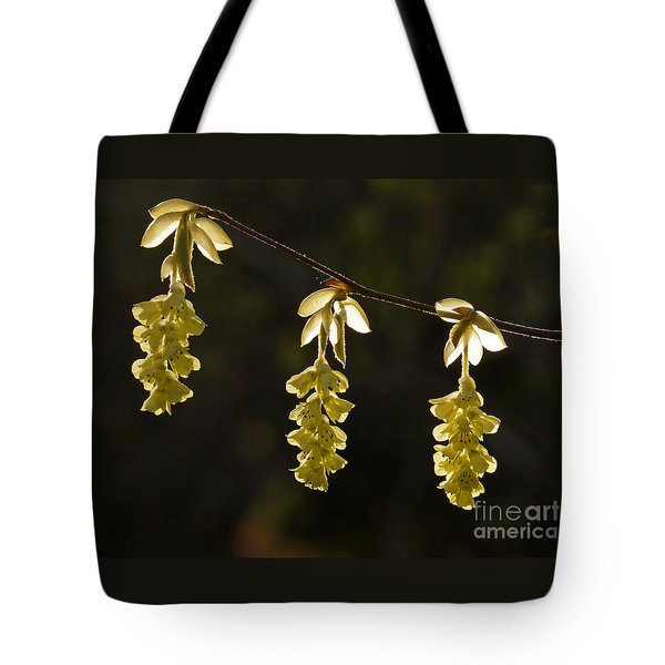 Tote Bag featuring the photograph Triplets by Inge Riis McDonald