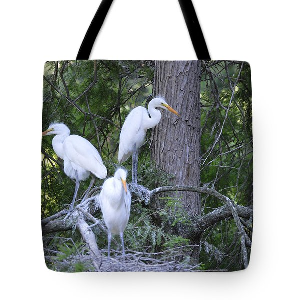 Tote Bag featuring the photograph Triplets by Judith Morris