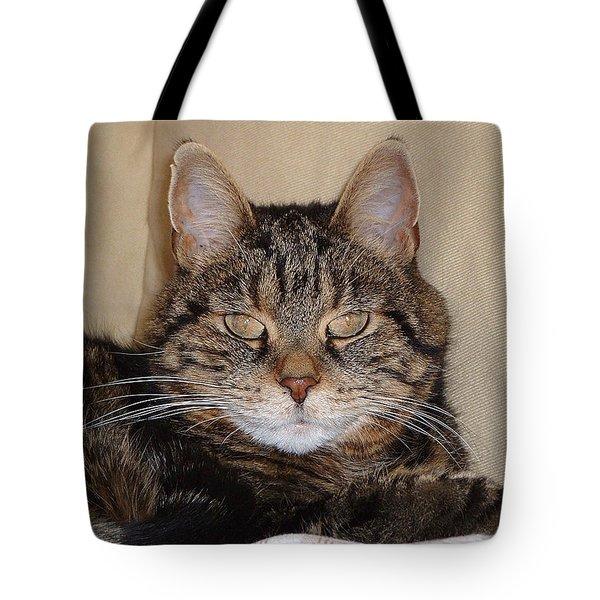 Tripod Tote Bag by Guy Whiteley