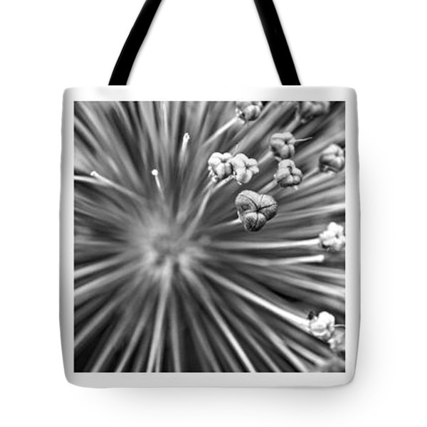 Triptych Allium Flower Tote Bag by Alexander Senin