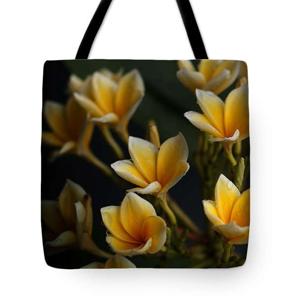 Tote Bag featuring the photograph Tropic Welcome by Miguel Winterpacht