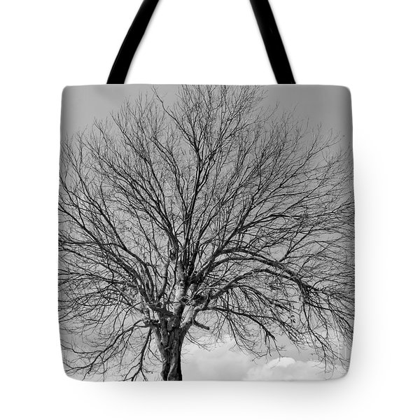 Tropic Winter Tote Bag