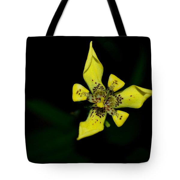 Tote Bag featuring the photograph Tropic Yellow by Miguel Winterpacht
