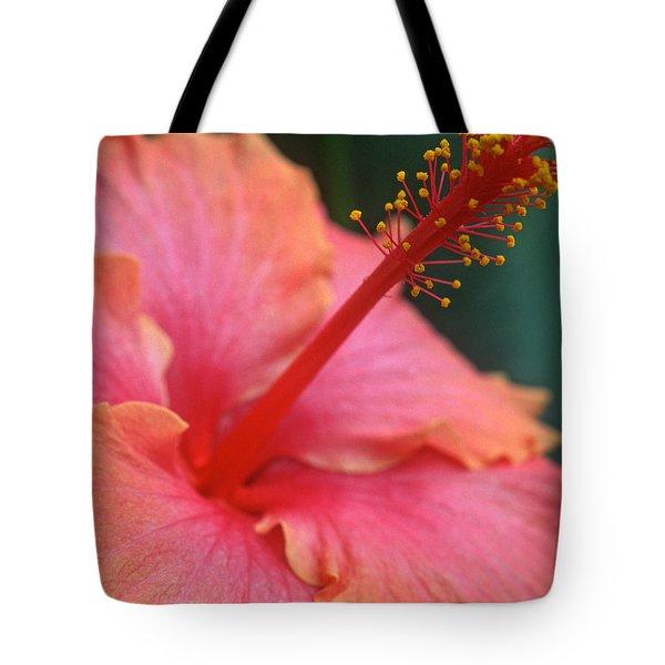 Tropical Beauty Tote Bag by Kathy Yates