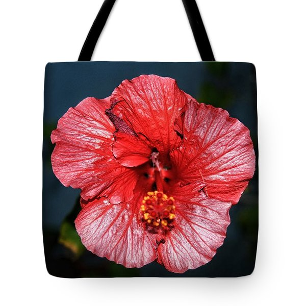 Tropical Burst Subdued Tote Bag