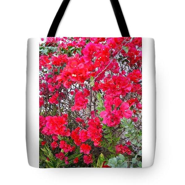 Tropical Flowers Of South Florida Tote Bag by Dora Sofia Caputo Photographic Design and Fine Art