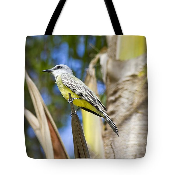 Tropical Kingbird Tote Bag by Teresa Zieba