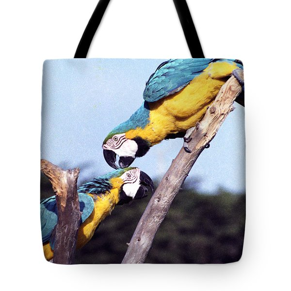 Tropical Parrots In Love Tote Bag