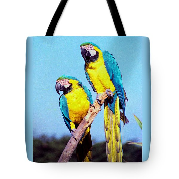 Tropical Parrots In San Francisco Tote Bag