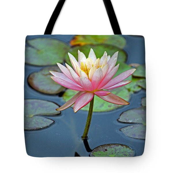 Tropical Pink Lily Tote Bag by Cynthia Guinn