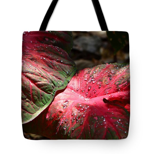 Tropical Rain - Botanical Art By Sharon Cummings Tote Bag