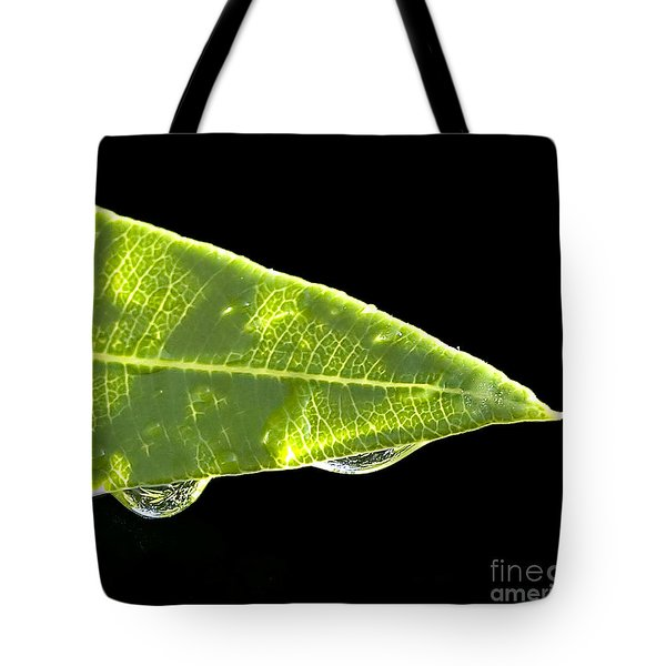 Tropical Reflections Tote Bag by Anne Rodkin