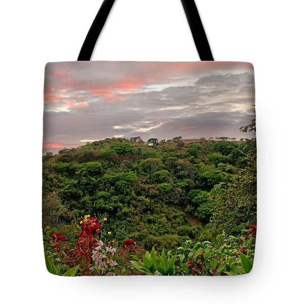 Tote Bag featuring the photograph Tropical Sunset Landscape by Peggy Collins
