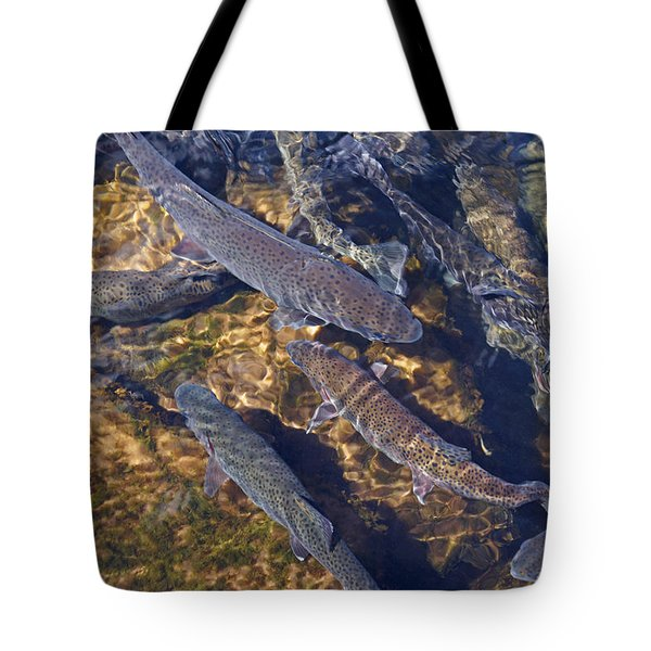 Trout Prints Rainbow Lake River Trout Tote Bag by Baslee Troutman