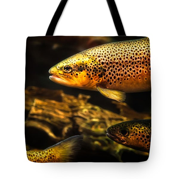 Trout Swiming In A River Tote Bag by Bob Orsillo