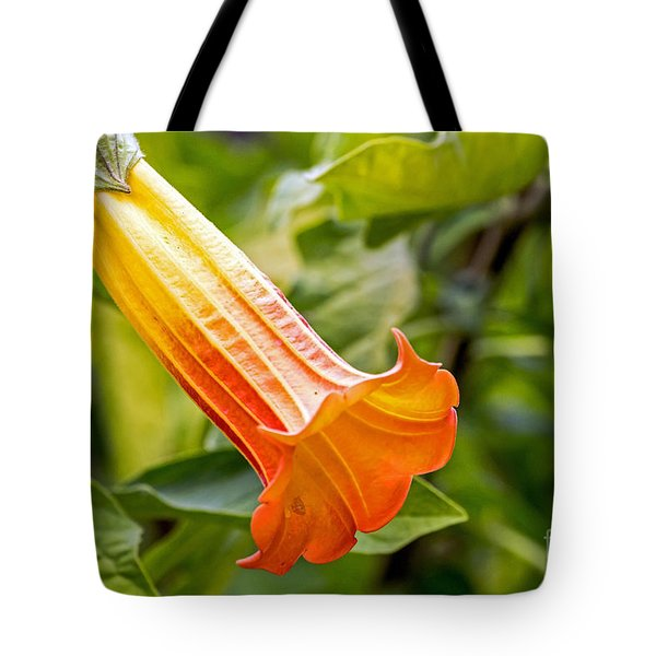 Tote Bag featuring the photograph Trumpet Flower by Kate Brown
