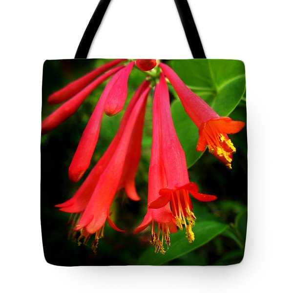 Wild Trumpet Honeysuckle Tote Bag