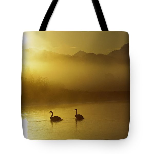 Trumpeter Swan Pair At Sunset Tote Bag by Michael Quinton