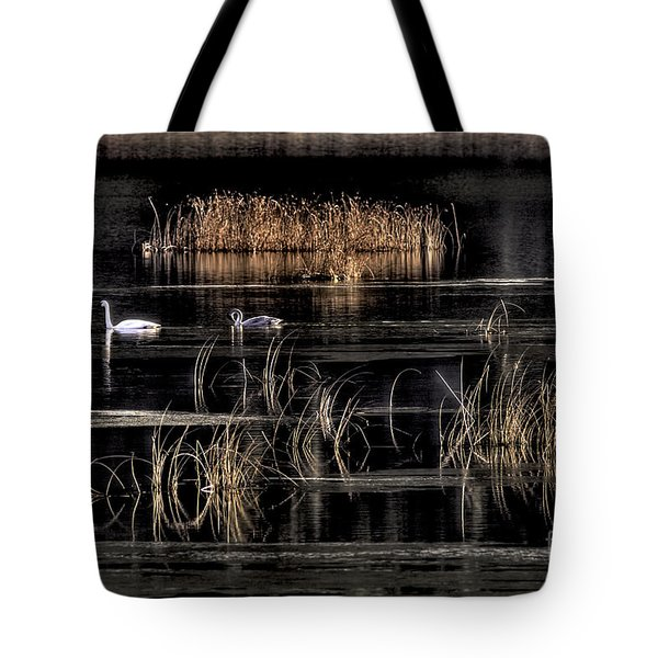 Trumpeter Swans A Swimming Tote Bag