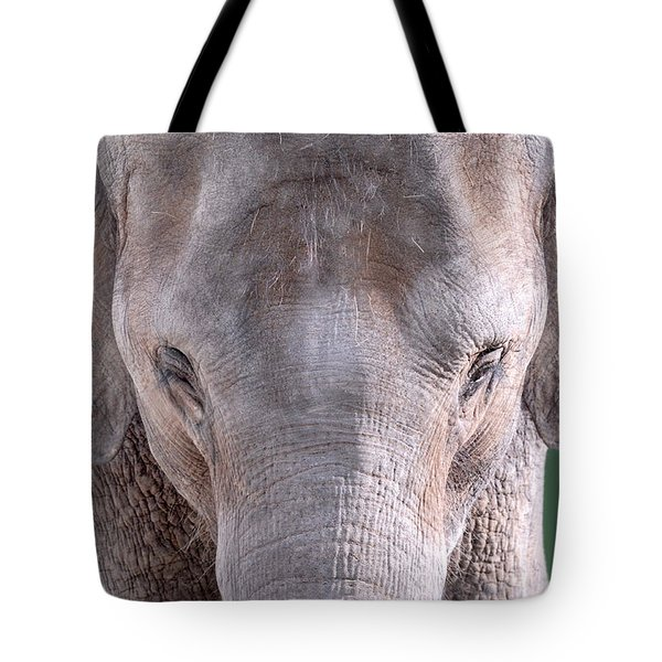 Tote Bag featuring the photograph Truncated by Dyle   Warren