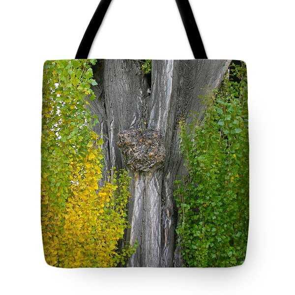 Trunk Lines Tote Bag