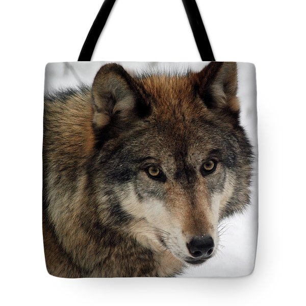 Tote Bag featuring the photograph Trusting by Richard Bryce and Family