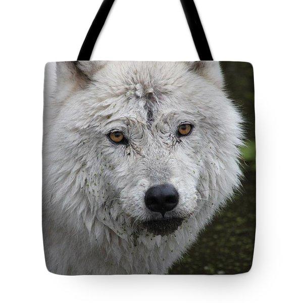 Trusting Tote Bag