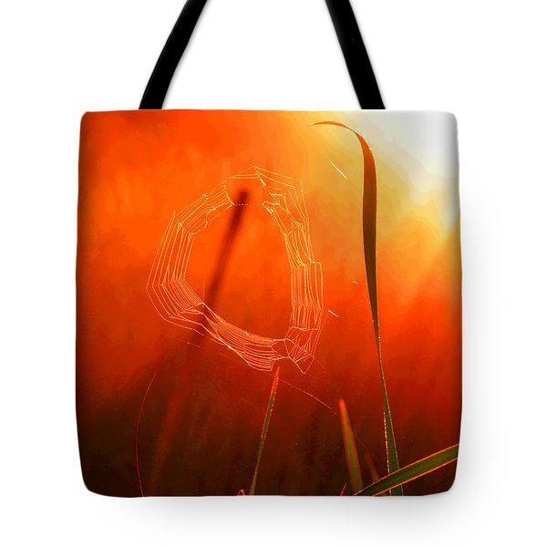 The Spider's Web In Golden Sunlight Tote Bag