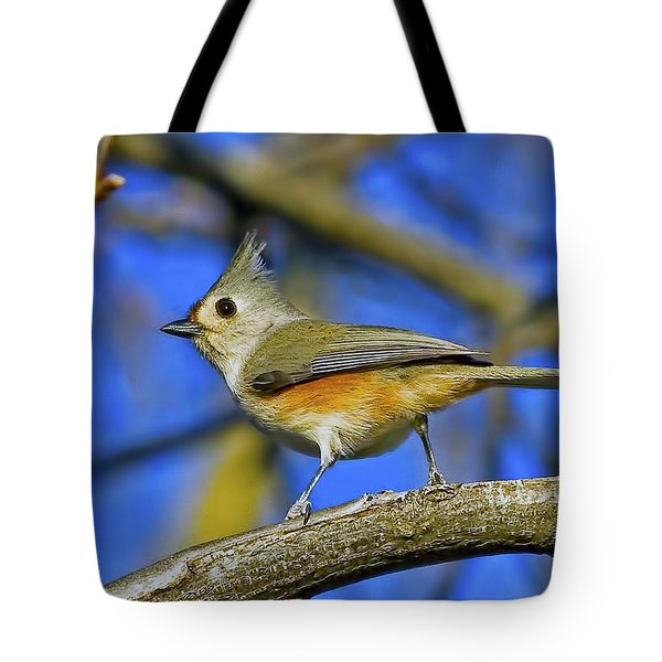 Tufted Titmouse Tote Bag by Gary Holmes