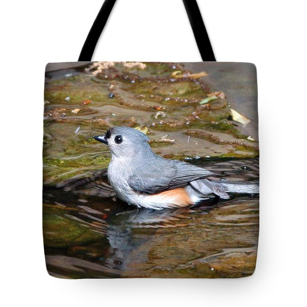 Tufted Titmouse In Pond II Tote Bag by Sandy Keeton