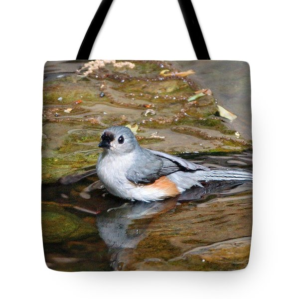 Tufted Titmouse In Pond Tote Bag by Sandy Keeton