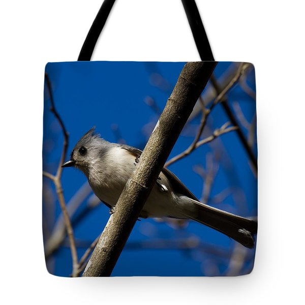 Tufted Titmouse Tote Bag by Robert L Jackson