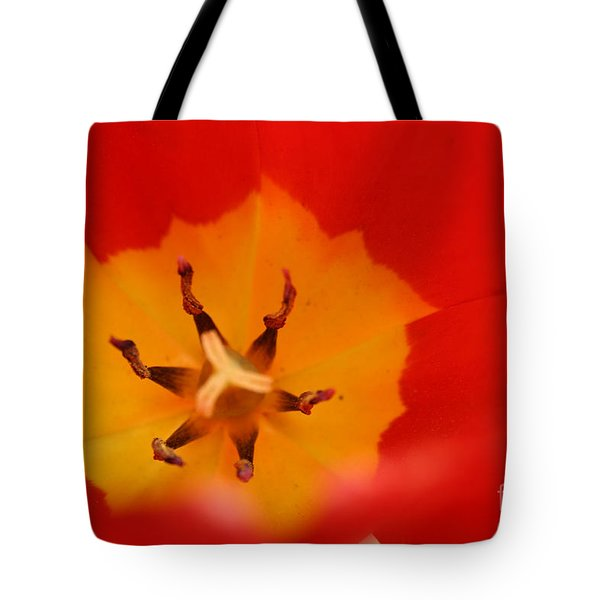 Tulip Collection Photo 3 Tote Bag