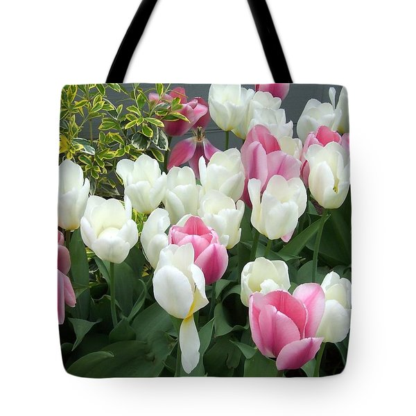 Purple And White Tulips Tote Bag by Catherine Gagne