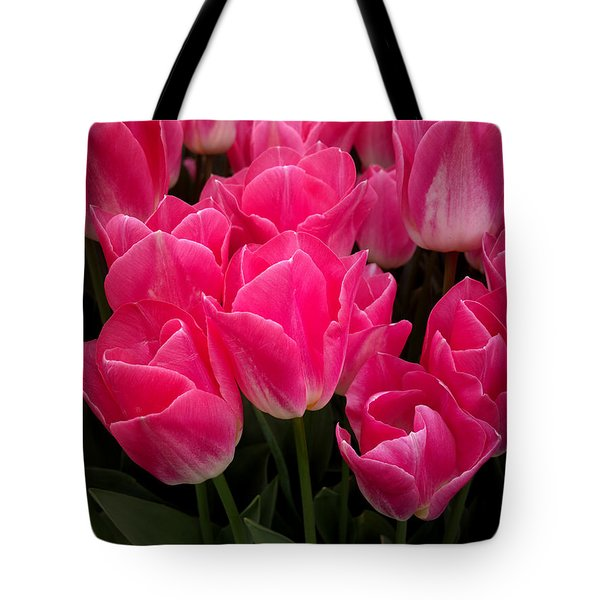 Tote Bag featuring the photograph Tulip Festival - 19 by Hanza Turgul