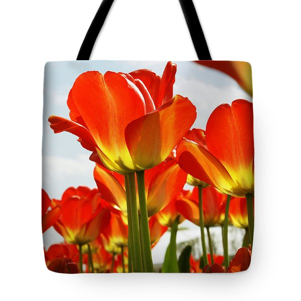 Tote Bag featuring the photograph Tulip Field 1 by Rudi Prott