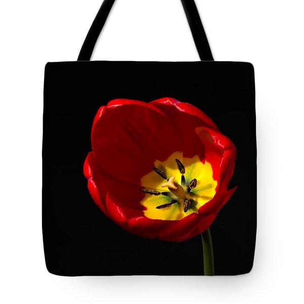 Tulip Glory Tote Bag