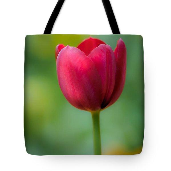 Tulip In Contrast Tote Bag