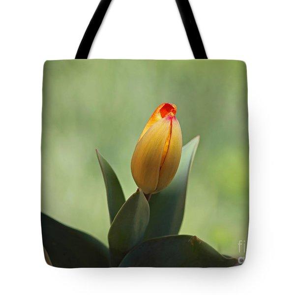 New Beginning Tote Bag by Lisa L Silva