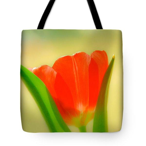 Tulip  Tote Bag by Menachem Ganon
