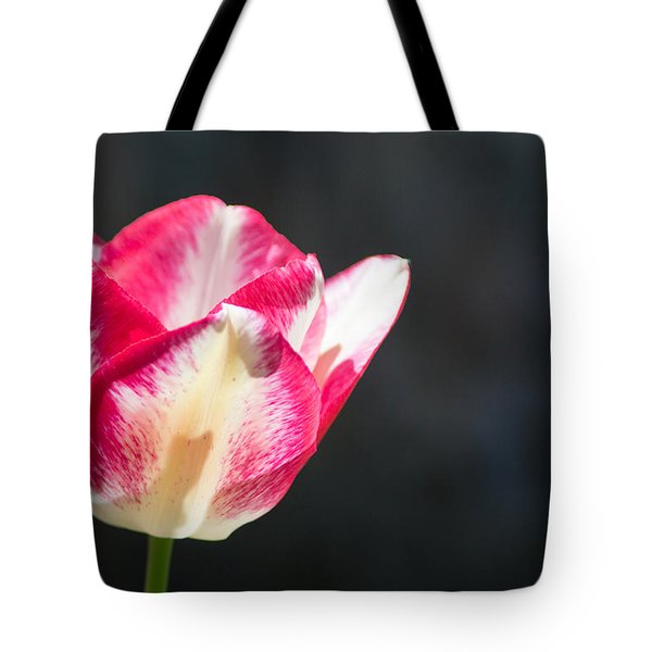 Tulip On Black Tote Bag by Photographic Arts And Design Studio