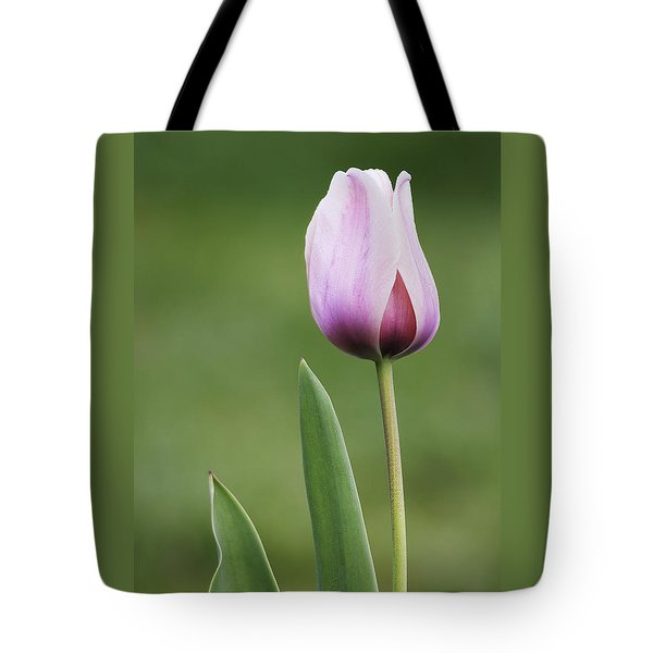 Tote Bag featuring the photograph Tulip 2 by Ram Vasudev