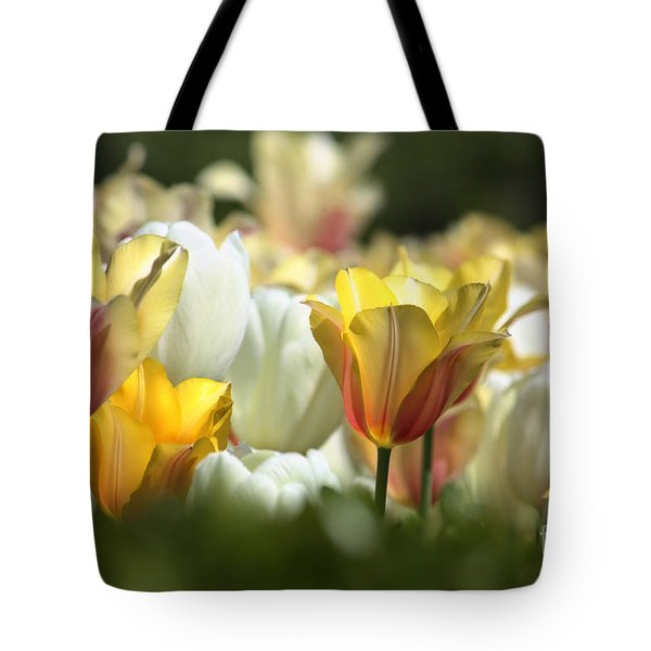 Tulip Sunrise Tote Bag