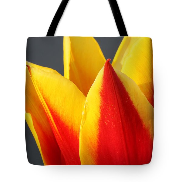 Tote Bag featuring the photograph Tulip by Todd Blanchard
