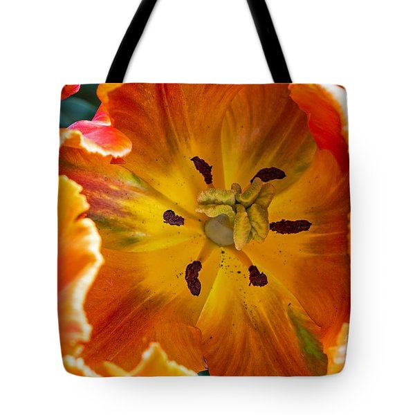 Tote Bag featuring the photograph Tulip Two by Kate Brown