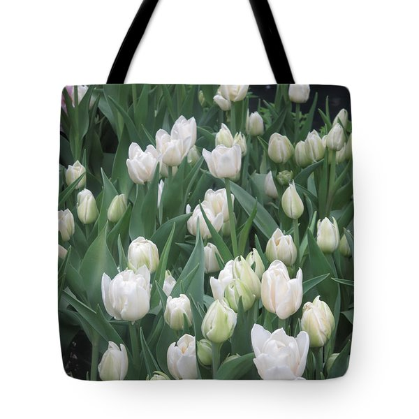Tote Bag featuring the photograph Tulip White Show Flower Butterfly Garden by Navin Joshi